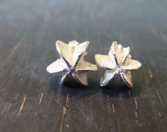 Star Seedpod Post Earrings, Botanical Jewelry, Nature Cast, Ready to Ship