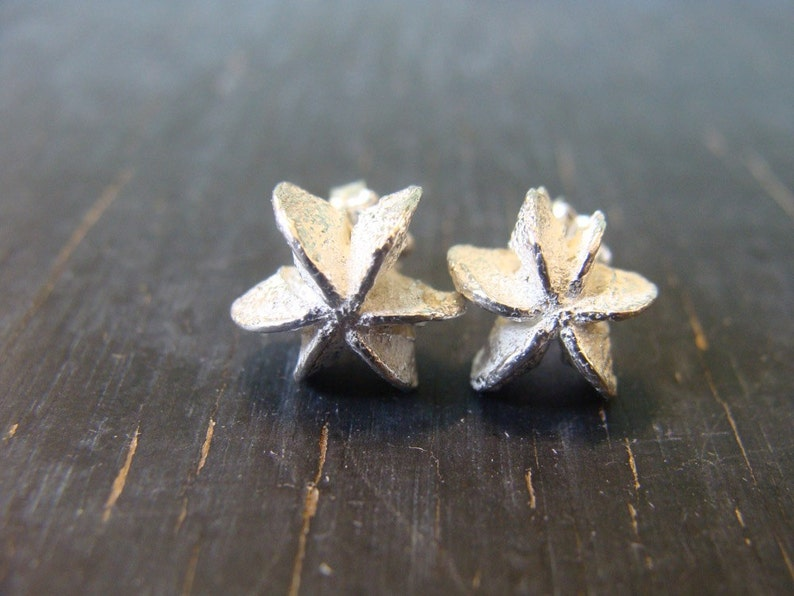 Star Seedpod Post Earrings Botanical Jewelry Nature Cast image 0