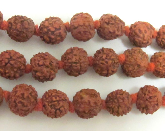 Rudraksha seed beads from Nepal - 10 beads set - NB101