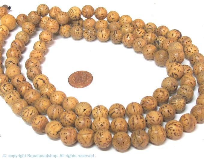 108 mala beads -tibetan mala Round oval shape natural 11-13 mm size bodhi seed beads guru bead from Nepal mala making beads - ML120A