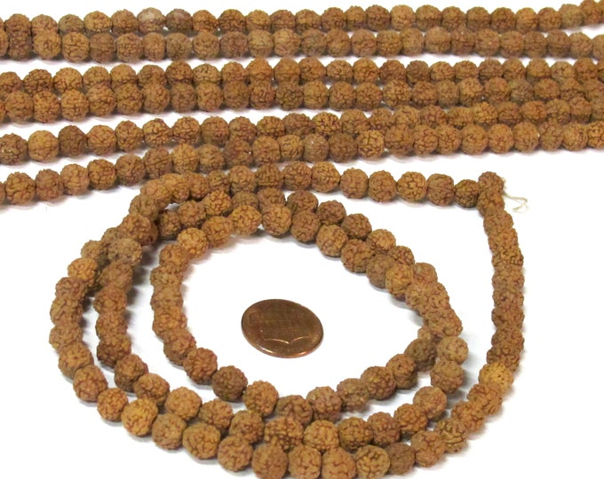 108 beads  - 7-8 mm Nepal rudraksha  mala making beads supplies natural Rudraksha seed beads - ML121A
