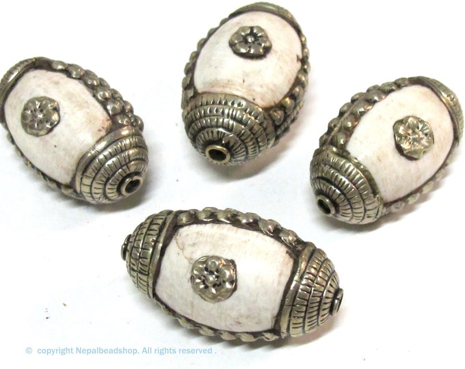 2 Beads - Large and Thick Tribal naga conch shell silver capped floral design focal bead from Nepal - CH040Bs