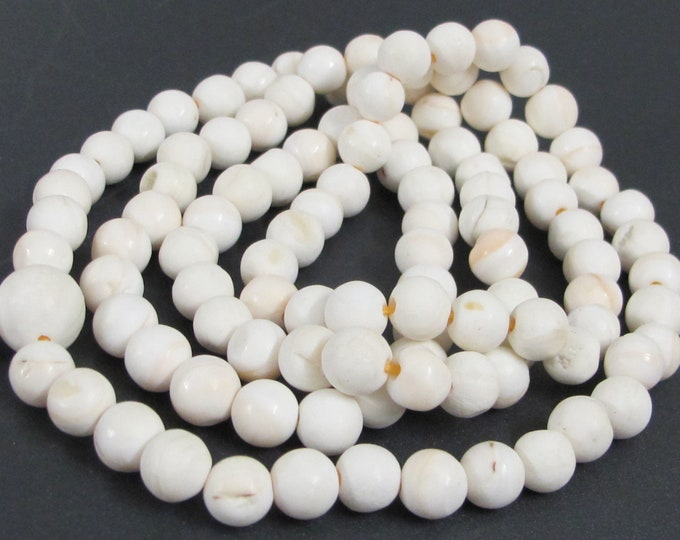 1 strand - 108 conch shell Beads - tibetan beads Ethnic nepal natural conch shell beads 9 -10 mm wide  STR005K