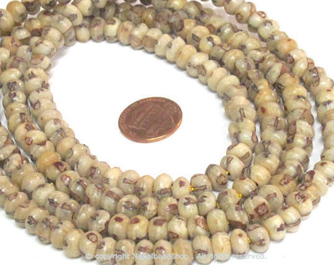 200 BEADS - 40 inches Full long strand  Natural palm nut rondelle abacus seed beads 7 -  8 mm wide long- mala making beads - ML103A