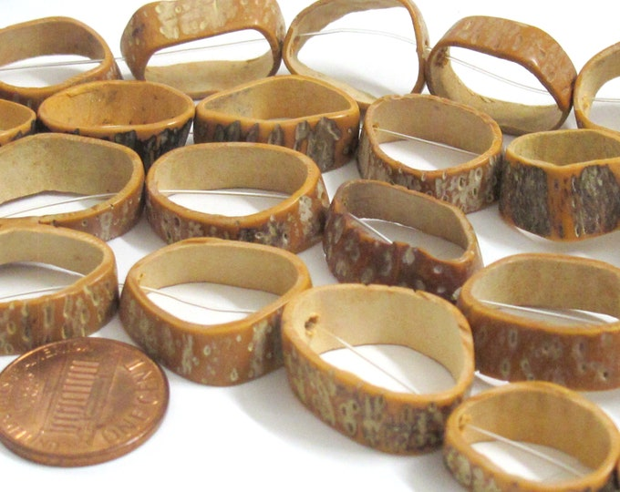 Natural saging saging shell ring beads - 6 pieces - NB051