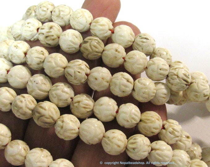 10 Beads - Small Ethnic nepal natural conch shell beads carved cut lotus floral shape  -- CH009E