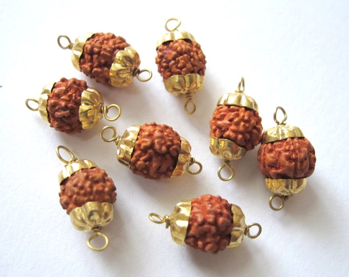 10 Beads-Natural Nepal Rudraksha seed brass capped connector beads - NB096