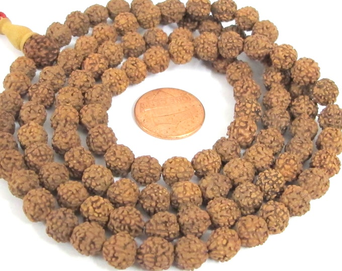 108 mala making beads supplies - Natural Rudraksha seed beads 7- 8 mm   ML108A - copyright Nepalbeadshop