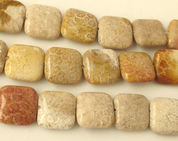 4 beads - 15 mm wide Fossil coral agate square beads - GM154