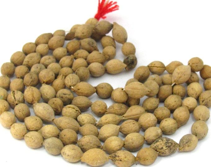 108 mala Beads supply - Natural putijia seed beads mala making supplies - ML053A