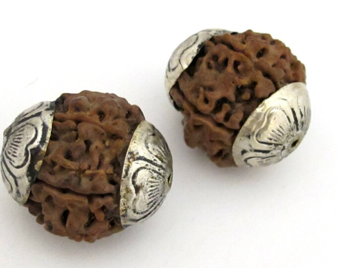 2 Beads - Large size Nepal Rudraksha beads with tibetan silver floral cap - NB134