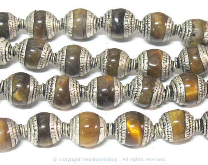 4 Beads - Tibetan silver color capped tigers eye  gemstone beads from Nepal 7 - 8 mm x 9 - 10 mm  -  BD779B