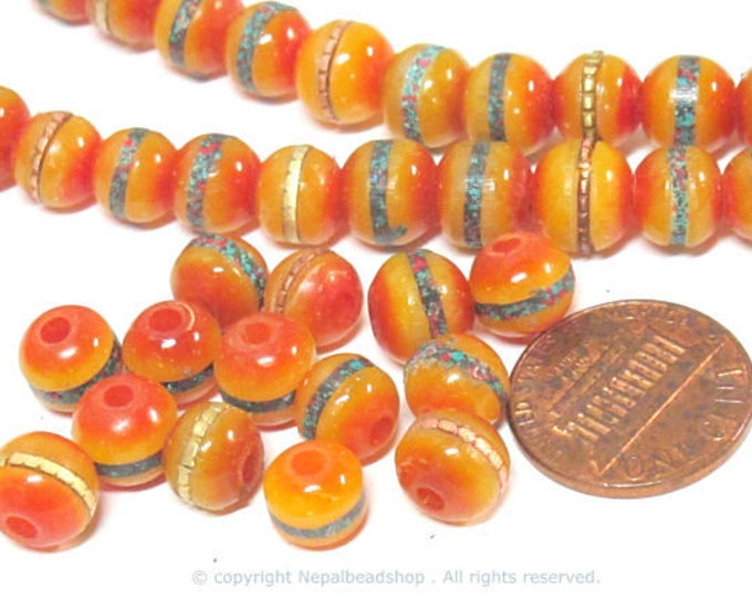 50 beads - 8 mm Tibetan honey yellow resin beads with brass ,turquoise coral inlay - ML109B