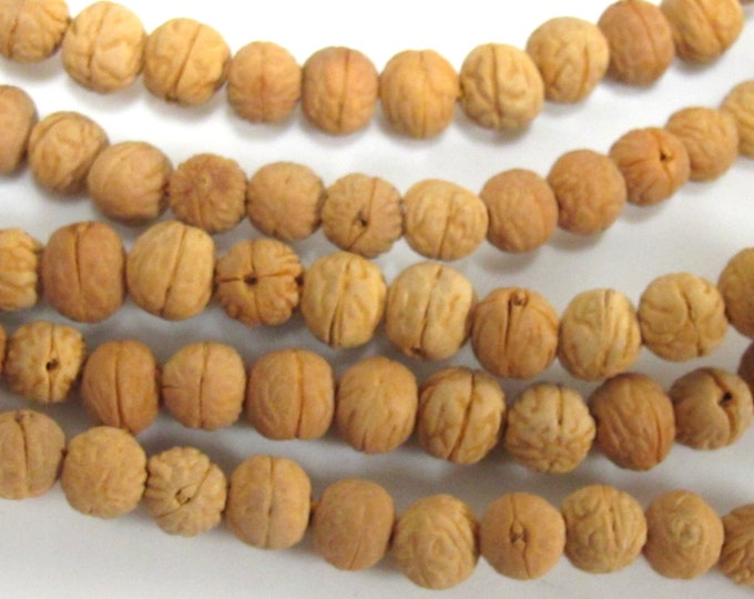 20 beads -  Light brown tan color small natural Bodhi seed beads mala from Nepal - ML025