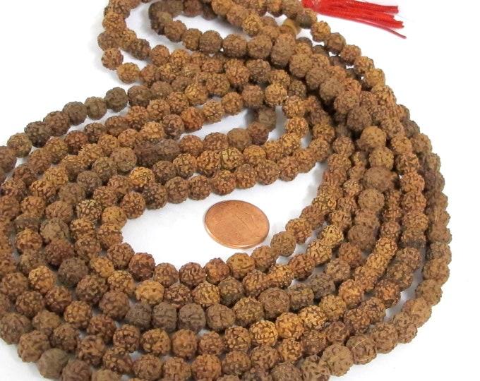 3 strands lot - 108 beads per strand - 108 mala making beads supplies  Natural Rudraksha seed beads 7- 8 mm   ML108A -  Nepalbeadshop