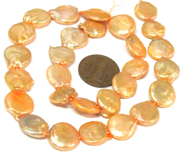 1 Full strand - Champagne color freshwater cultured pearl  coin shape disc beads 12 -1 3 mm wide size 14 inches strand - PL038A