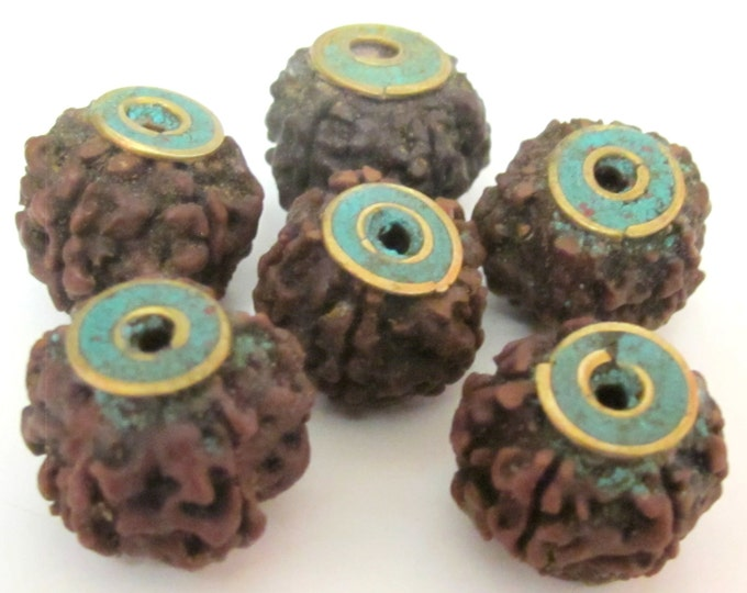 4  BEADS - Nepal Rudraksha beads with Turquoise brass capped - NB119