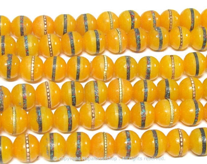 50 beads - 10 -11 mm Tibetan honey yellow resin beads with brass ,turquoise coral inlay - ML110B