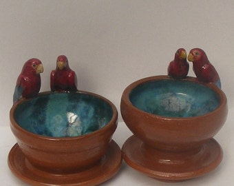 SALE  Two Bird  Bowls, Blue Red parrots on Terracotta turquoise bowls