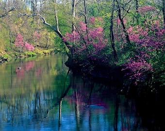 Four seasonal photos of Wildcat Creek, Carroll County, Indiana