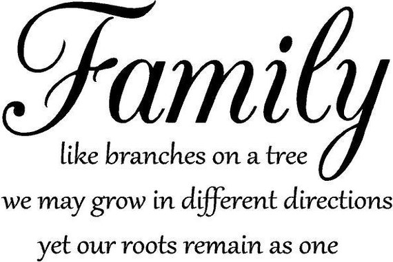 Family Like Branches On A Tree Vinyl Decal Wall Art Lettering Etsy