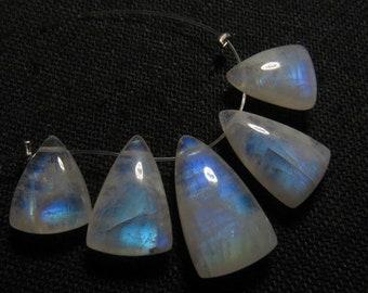 AAA 8x11-9x15-5 pcs Rainbow Moonstone High Grade Quality Smooth Polished Fancy shape Briolett So Gorgeous Rainbow Blue Fire size