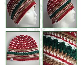 Country Mountain Pines Warm Winter Beanie Crochet Pattern