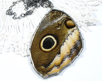 """Real Butterfly Jewelry, Owl Butterfly Pendant, Statement Necklace, Butterfly Wing Necklace, Unique Gift, 18"""" Sterling Chain"""