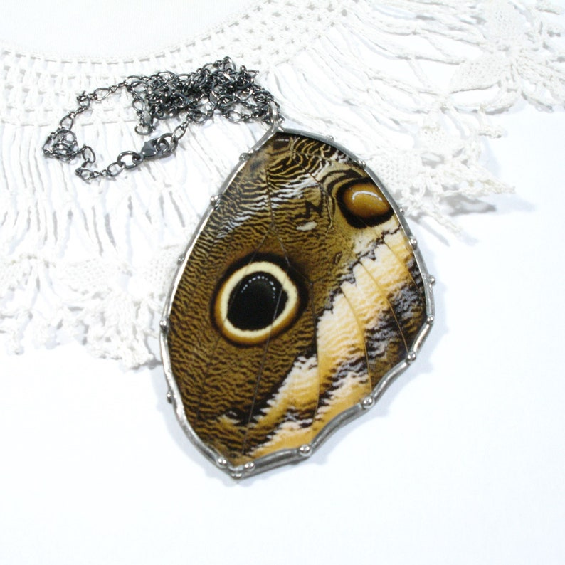 Real Butterfly Jewelry Owl Butterfly Pendant Statement image 0