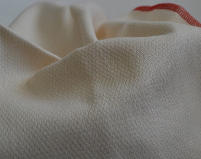 20 pack 2-Ply GOTS Certified Organic Cotton Little Wipes 8x8.....Your Choice of Edging Color...Free US Shipping
