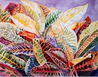 Crotons, Watercolor, Print  8 x 11, or 11 x 15 Home Decor, tropical, Florida watercolorsnmore