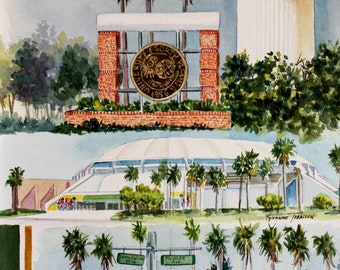 University of South Florida GiClee ART print 11 x 15 or 5 x 7 note card USF Graduation