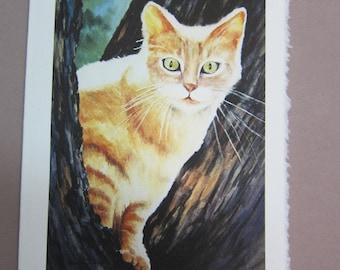 Cat Tabby Watercolor print 5 x 7 note card watercolorsNmore greeting card paper goods