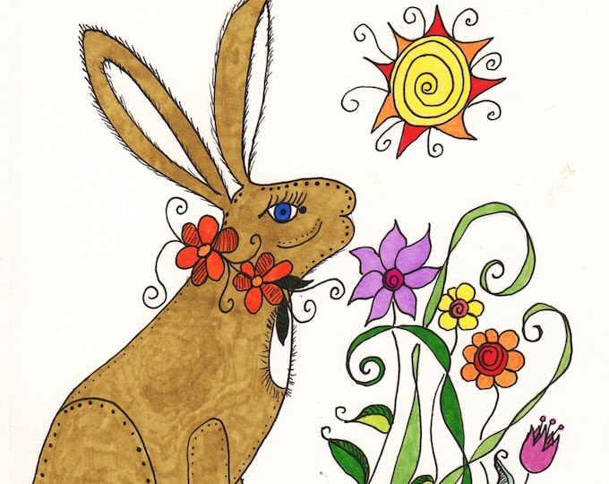 The Sun Rabbit Cards