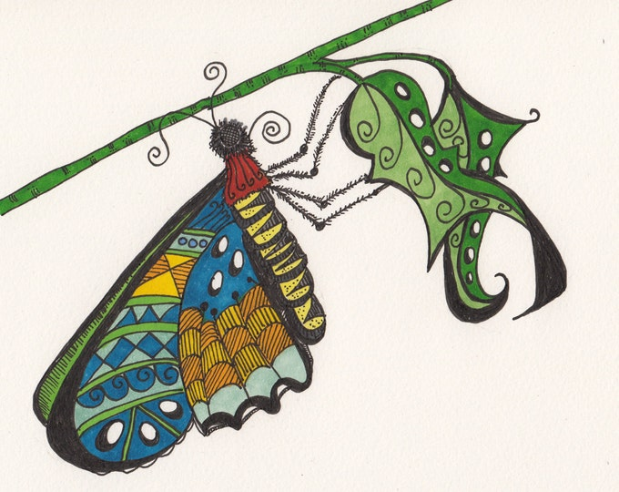 The Zen Butterfly Cards