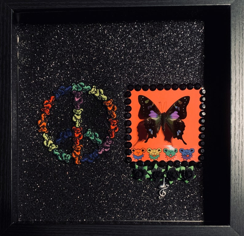 Grateful Dead Real Butterfly Shadowbox image 0