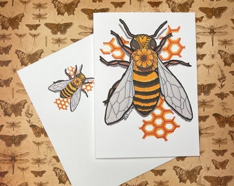 ASSORTED INSECT NOTECARDS - Any Occasion