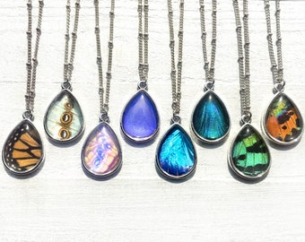 Real butterfly wing necklace Best selling items Pressed flower jewelry Monarch butterfly necklace Taxidermy Butterfly wing jewelry