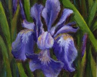 Iris Floral Art, Small Acrylic Painting of Purple Iris, Original Flower Painting