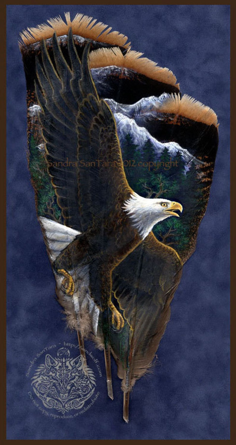 Bald Eagle Soaring Bird Wildlife Art Painted Feather Print image 0
