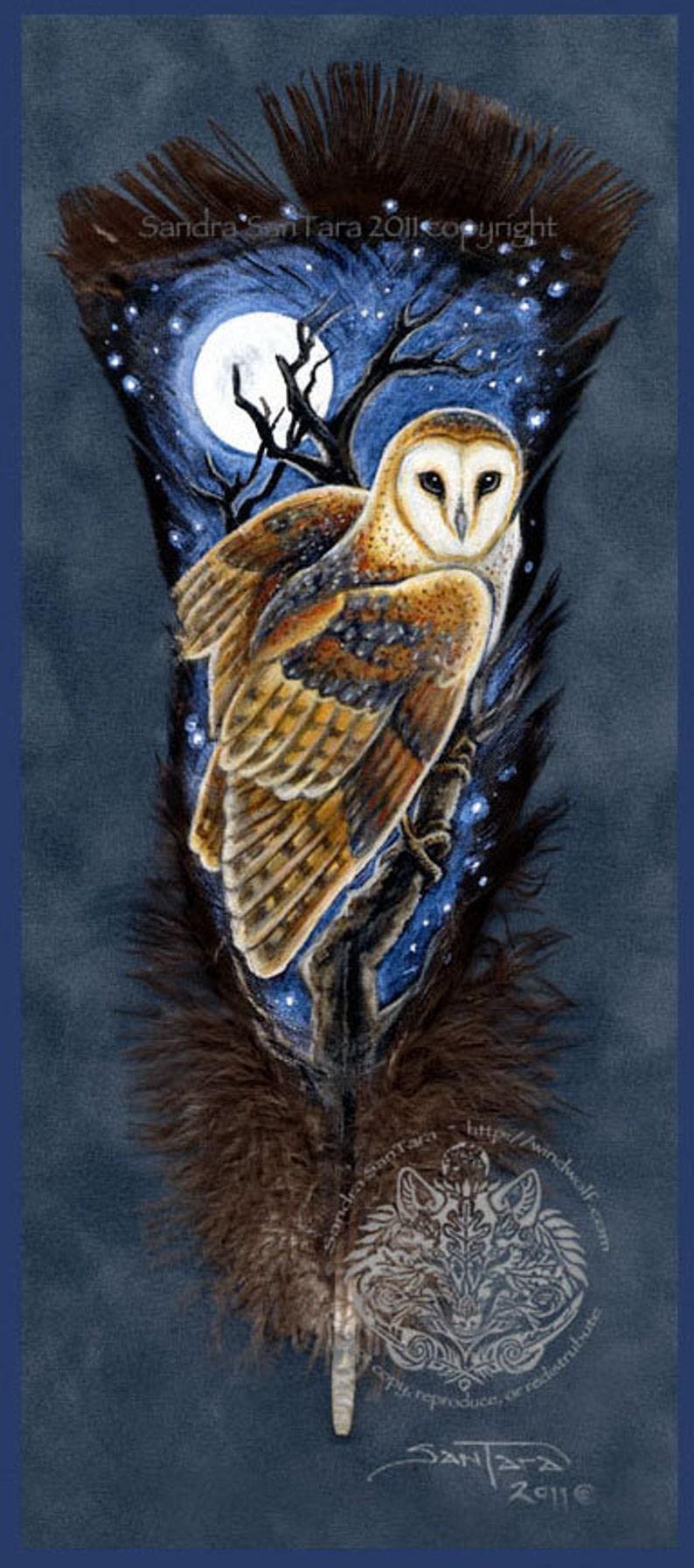 Barn Owl Bird Wildlife Art Painted Feather Print image 0
