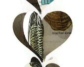 Fossils Paper Heart Garland