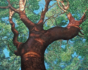 """Arbutus Giant, 30"""" x 24"""" Original Acrylic Painting on Canvas, Tree Artwork Home, Vertical Wall Art, Gift, Living room Decor, Native plants,"""