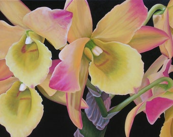 """Orchid Smile  24"""" x 36"""" Original Acrylic Painting on Canvas, Artwork Home, Horizontal Flower Close up, Living room Decor, Yellow Orchids"""