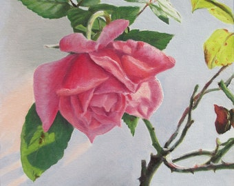 """Pink Rose, 8"""" x 8"""" Original Oil Painting on Canvas, Flower Artwork Gift, Small Square Art, Close up Flower, Intimate Space Art, Corner Decor"""