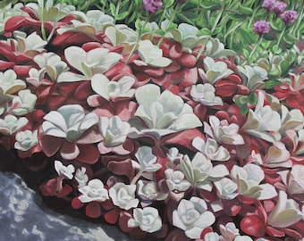 "Stonecrop Sea Blush, 36"" x 24"" Original Oil Painting on Canvas, Flower Artwork Home, Vertical Wall Art, BC Wild Flowers, Living room Decor"