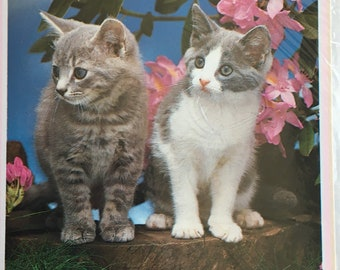 Vintage 11th Birthday Card, Unused, Cute Cats, Kittens