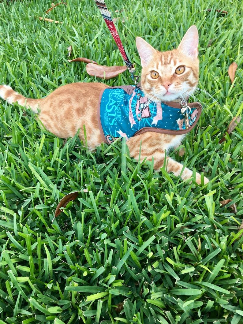 Fantastic Beasts Dog/Cat Harness image 0