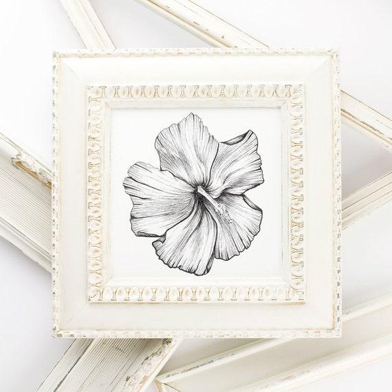 Flor de Maga Fine Art Print Stift und Tinte Hibiskus tropische | Etsy