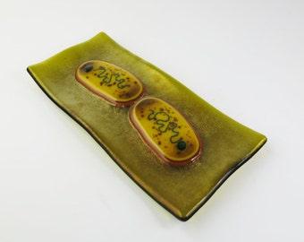 Pasteurella multocida Bacteria Fused Glass Dish
